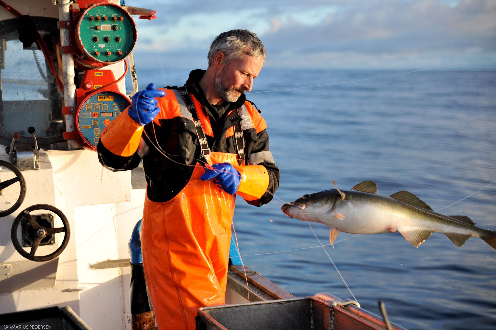 Fisker.jpg